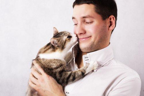 Wie Viel Kostet Eigentlich Ein Haustier Hasch Ziit